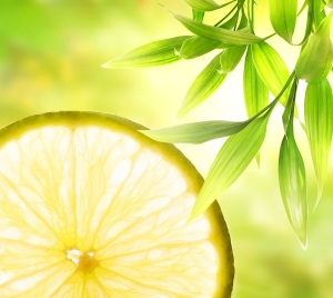bigstock-Lemon-slice-over-abstract-gree-13207784